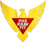logo-yellowbird-redtriangle